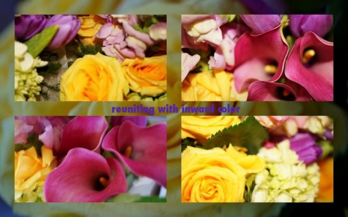 1-Pics for Blog Edits45