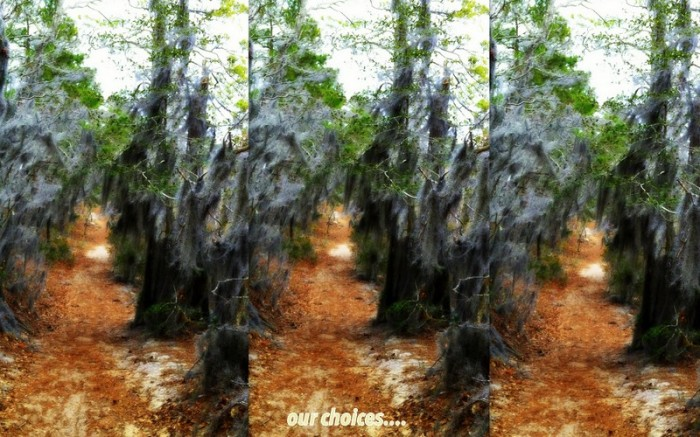 1-Pics for Blog Edits50