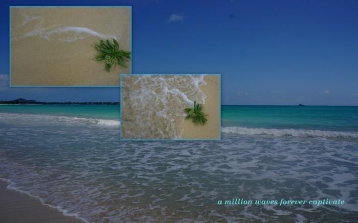 1-Pics for Blog Edits69