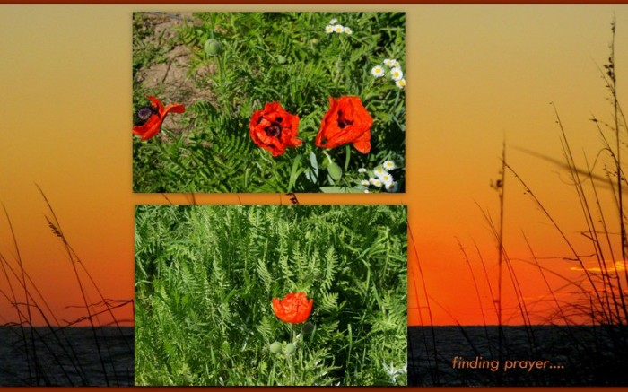 1-Pics for Blog Edits74