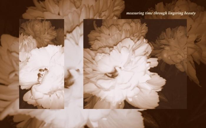 1-Pics for Blog Edits75-001