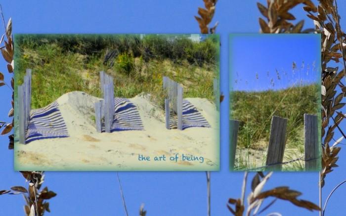 1-Pics for Blog Edits87