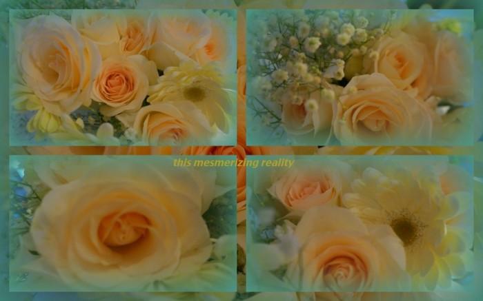 1-Pics for Blog Edits103