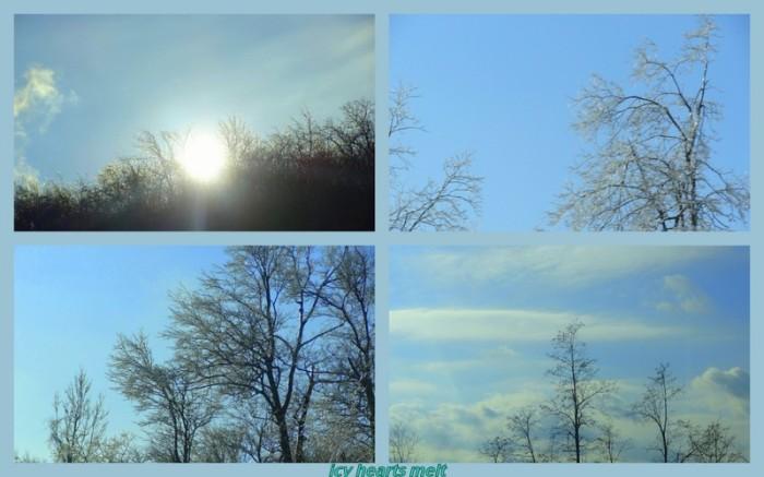 1-Pics for Blog Edits61