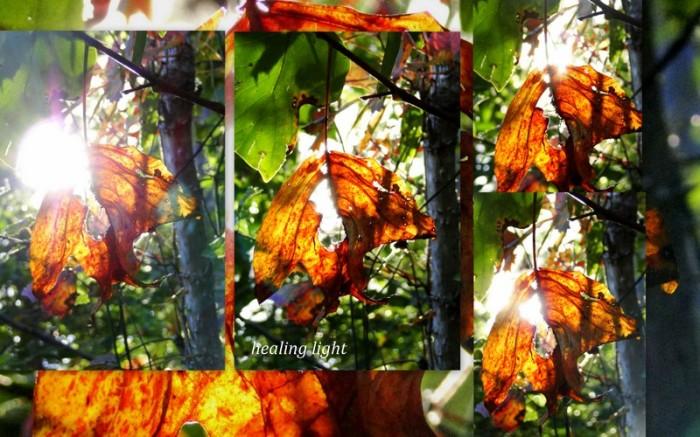 1-Pics for Blog Edits80