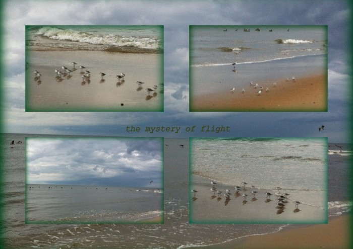 1-Pics for Blog Edits97