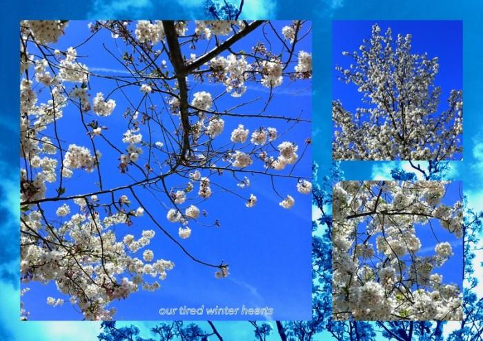1-Pics for Blog Edits101