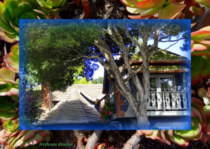 1-Pics for Blog Edits111