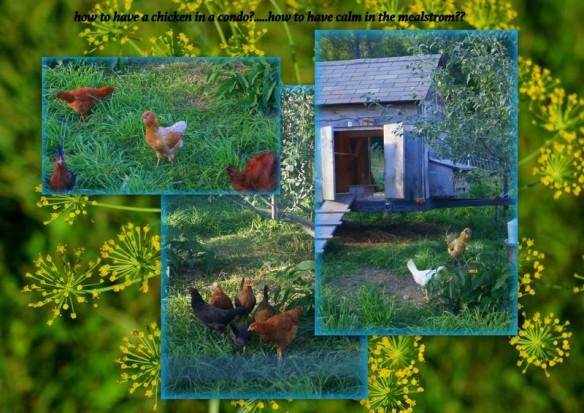 1-Pics for Blog Edits149