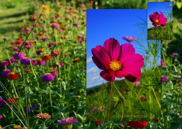 1-Pics for Blog Edits150