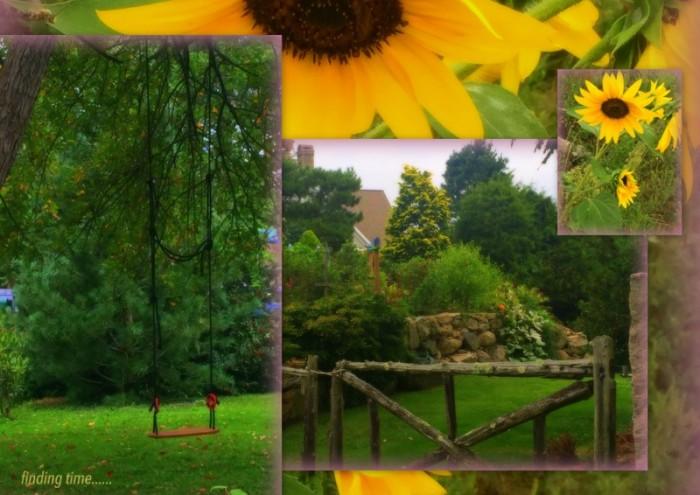 1-Pics for Blog Edits154