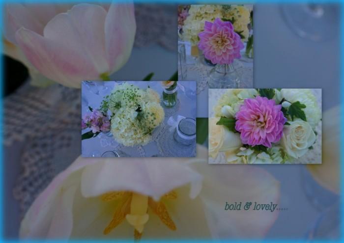 1-Pics for Blog Edits155