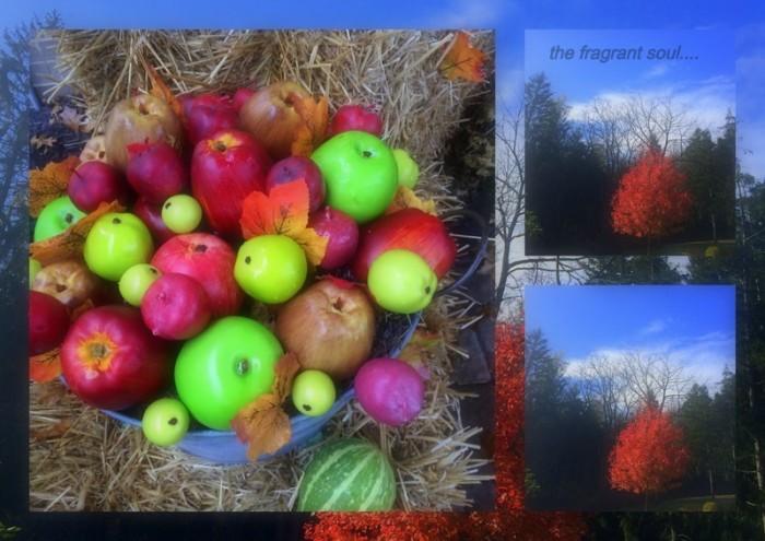 1-Pics for Blog Edits167