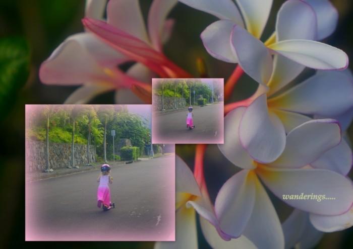 1-Pics for Blog Edits174
