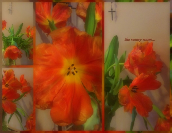 1-Pics for Blog Edits207