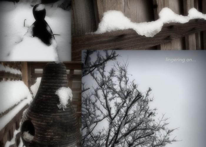 1-Pics for Blog Edits217
