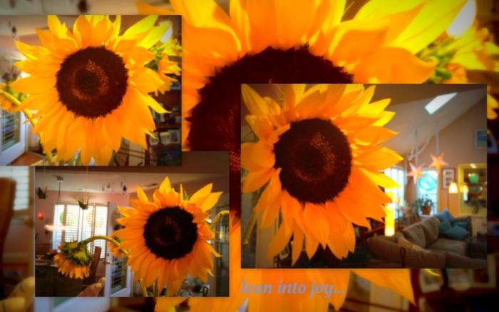 1-Pics for Blog Edits228