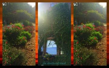 1-Pics for Blog Edits248