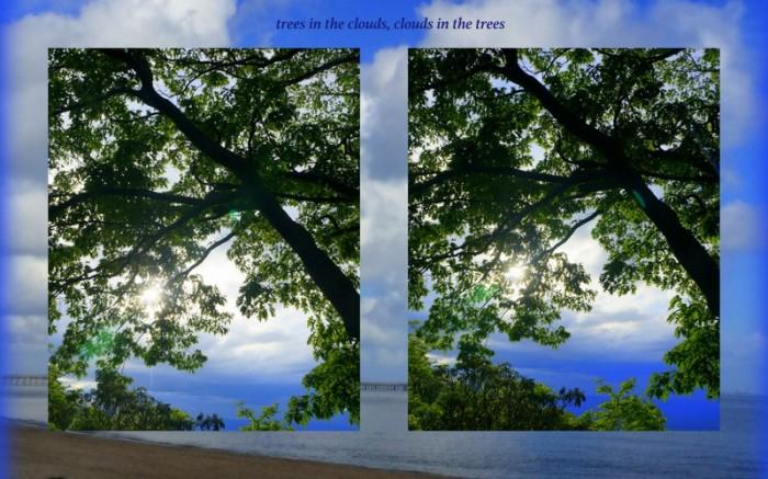 1-Pics for Blog Edits258