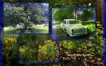 1-Pics for Blog Edits281
