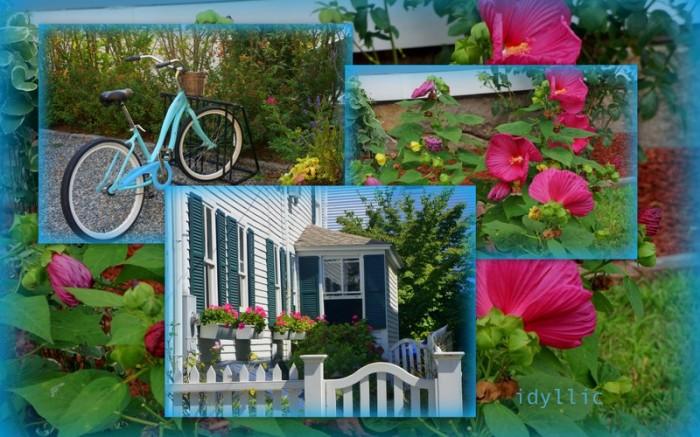 1-Pics for Blog Edits292