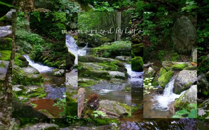 1-Pics for Blog Edits299