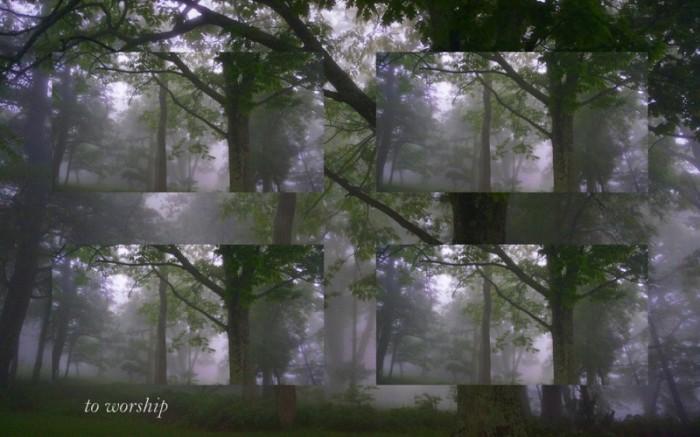 1-Pics for Blog Edits321
