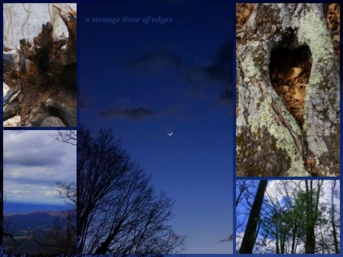 1-Pics for Blog Edits325