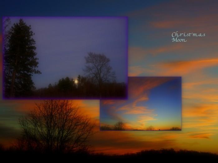 1-Pics for Blog Edits331