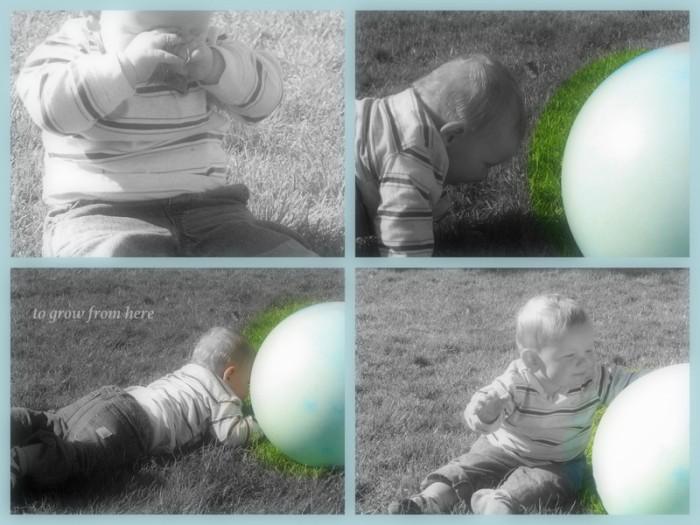 1-Pics for Blog Edits362