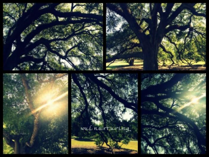 1-Pics for Blog Edits368.jpg
