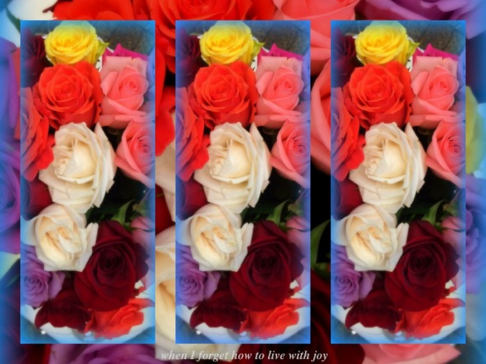 1-Pics for Blog Edits386