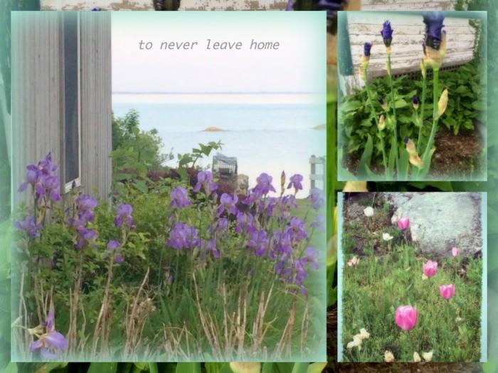 1-Pics for Blog Edits396
