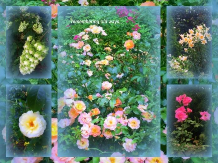 1-Pics for Blog Edits411.jpg