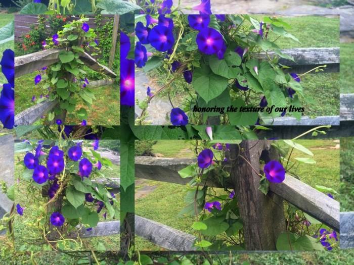 1-Pics for Blog Edits432.jpg
