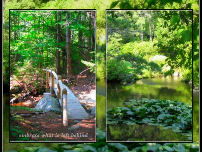 1-Pics for Blog Edits455.jpg