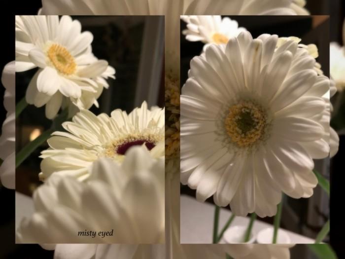 1-pics-for-blog-edits464