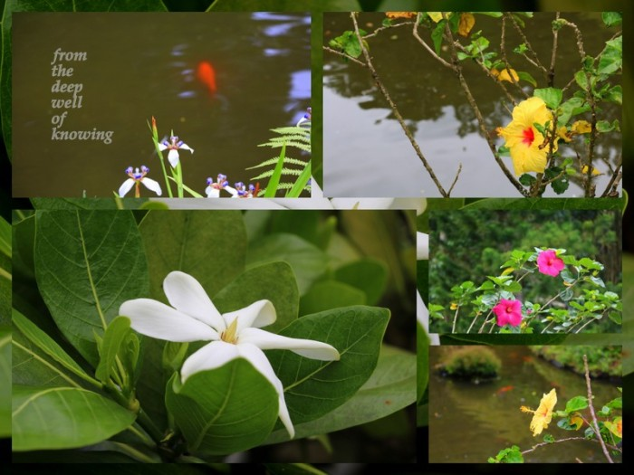 1-Pics for Blog Edits471.jpg