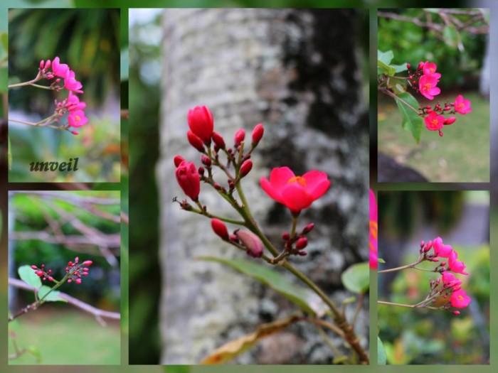 6-Pics for Blog Edits470.jpg