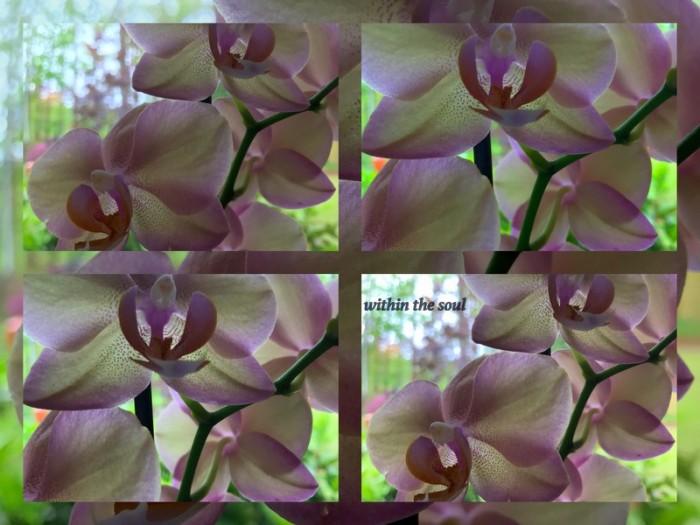 1-Pics for Blog Edits476.jpg