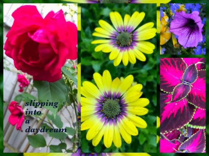 1-Pics for Blog Edits478.jpg