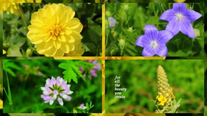 1-Pics for Blog Edits554.jpg