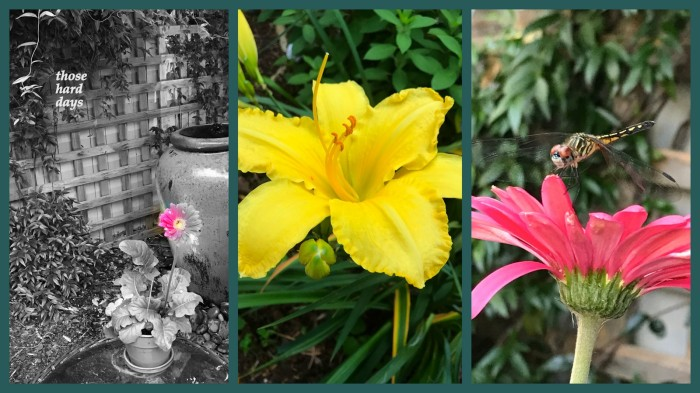 1-Pics for Blog Edits568.jpg